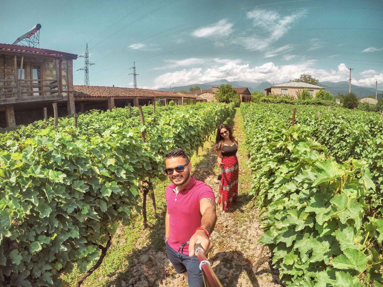 Vineyards in Georgia