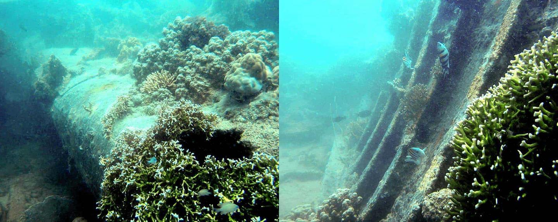 Ship Wreck Diving Zanzibar